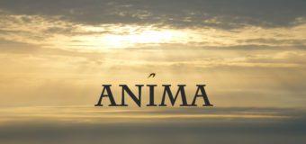 ANIMA (demo)